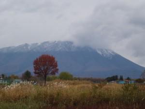 紅葉と雪山